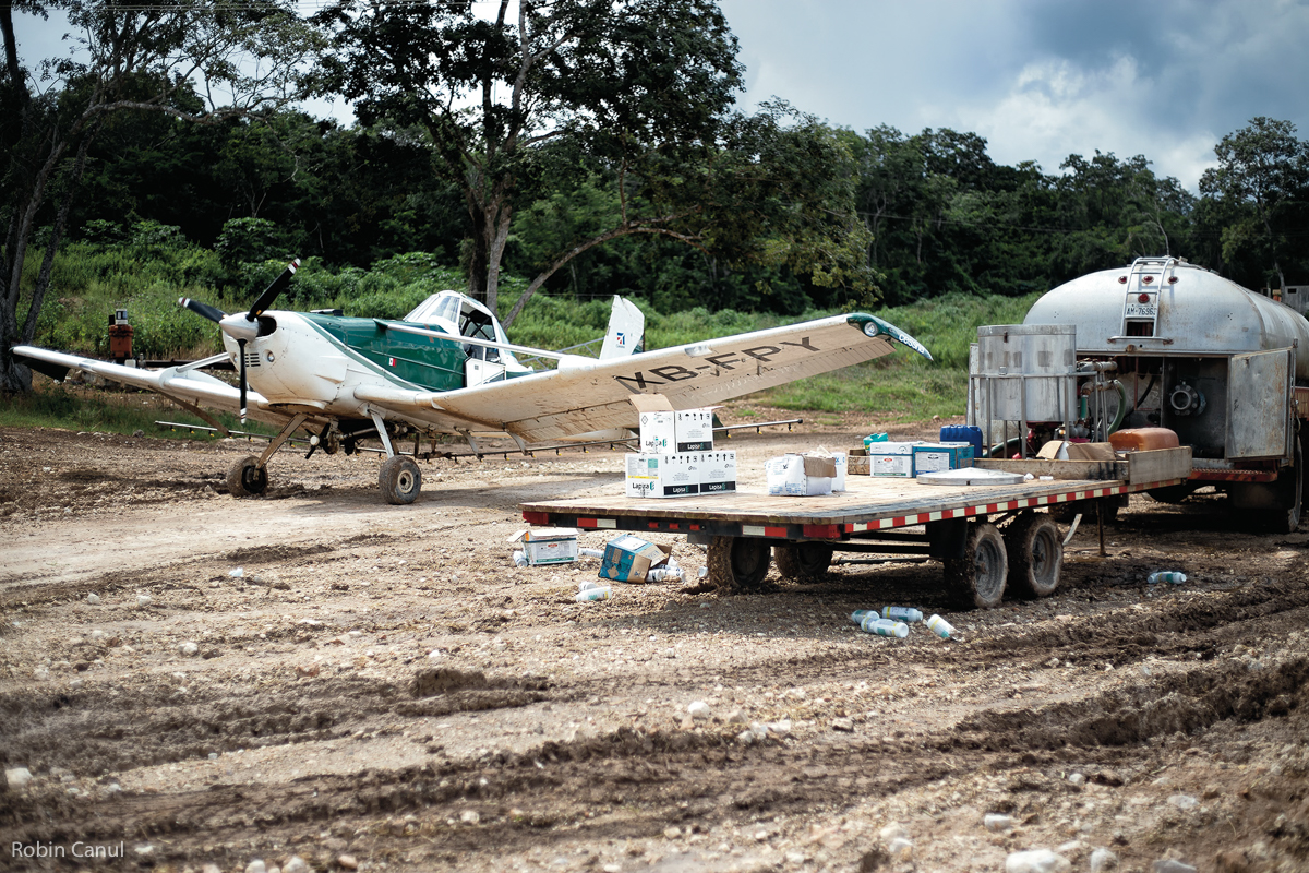Entre los años 1986 y 2015 se perdieron 44,596.5 hectáreas en el municipio de Hopelchén, Campeche. La principal actividad económica de las familias mayas en la zona es la apicultura y la deforestación ha ocasionado que en los años recientes la producción de miel baje en un 50%.  En el municipio se han intensificado las fumigaciones aéreas con plaguicidas, como parte de la implementación del modelo de agricultura industrial para monocultivos de soya transgénica, sorgo y maíz blanco. 19 de octubre de 2017.   (FOTO: Robin Canul)